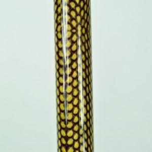 Arthritis Grip Cane - Folding, adjustable, Left Handed - Snake